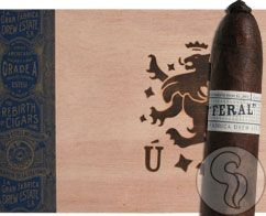 Drew Estate's most anticipated cigar has finally hit the market! After waiting for a long time since the release of the Flying Pig No.9 and T52, the Feral Pig is here! With only 4,500 boxes of 10 released in this first batch, these won't last very long and we don't yet know how long it will be until we get more. At 5 3/8 x 60, the Feral Pig is substantially larger than both its predecessors. The Feral Pig's construction is second to none, as in t