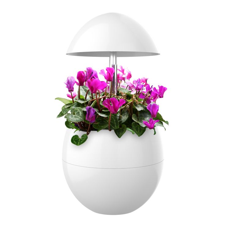 Garden Lamp With Hydroponic LED Technology by Domestic Diva LA