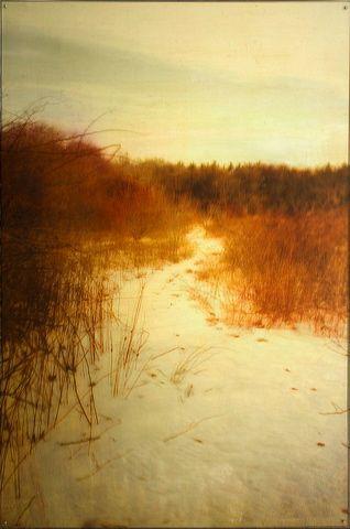 dorothy-simpson-krause_snowpath.jpg (318×480)