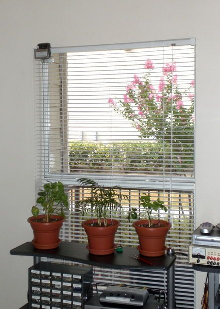 Picture of Automatic Window Blinds Controller (PICAXE) - so simple to do!