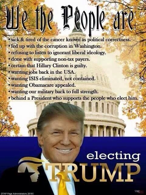 We the People are electing Trump!