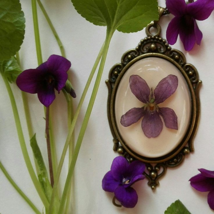 Easter is coming, violets are blooming, new pendants are shining