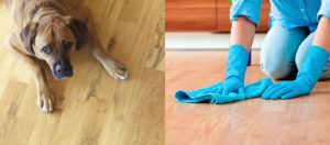 How to Protect Wood Floors When You Have Kids and Pets?  http://superchoicecarpet.ca/protect-wood-floors-kids-pets/