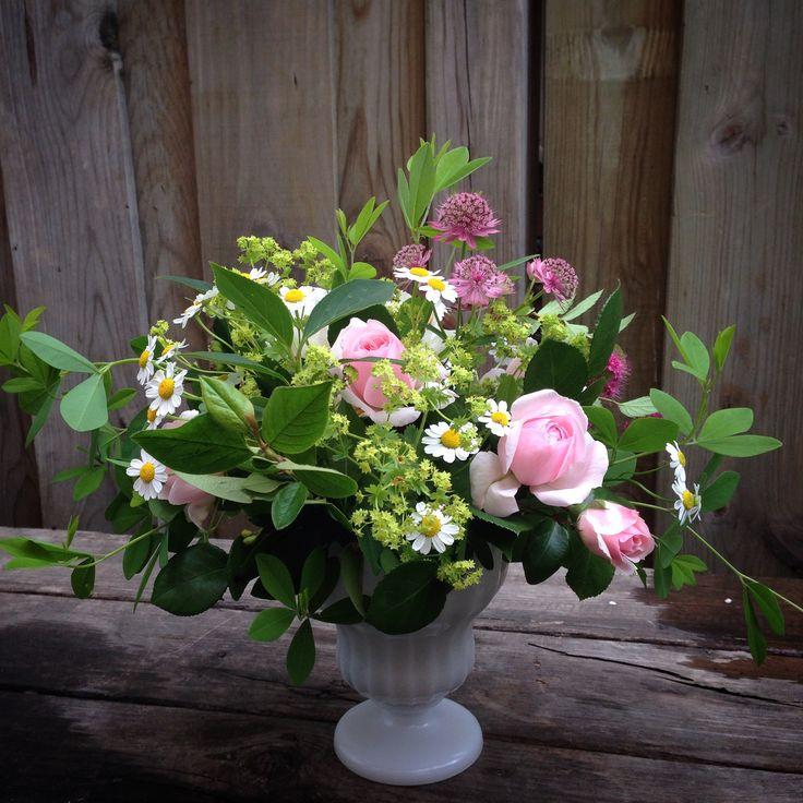 Garden roses, feverfew, Lady's Mantle, Baptisa, Astrantia