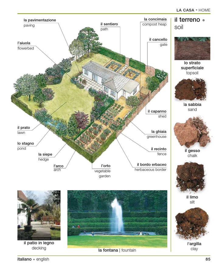 For a gardener like me, this is really useful vocabulary.