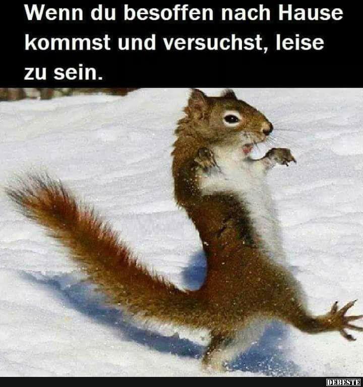 Besten Bilder Videos Und Spruche Und Es Kommen Taglich Neue Lustige Facebook Bilder Auf Debeste De Hier Werden Taglich Witz Lustige Tiere Tiere Witzige Tiere