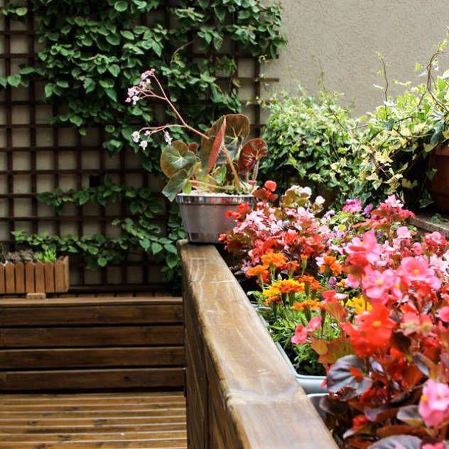 Mejores 115 im genes de los mejores jardines en pinterest for Homify jardines pequenos