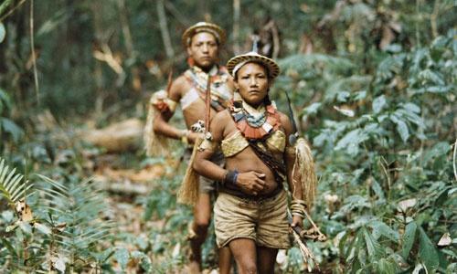 """""""Corumbiara. Czyż nie dobija się Indian?"""""""