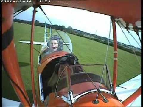 Tigermoth hits a cow during landing on a field