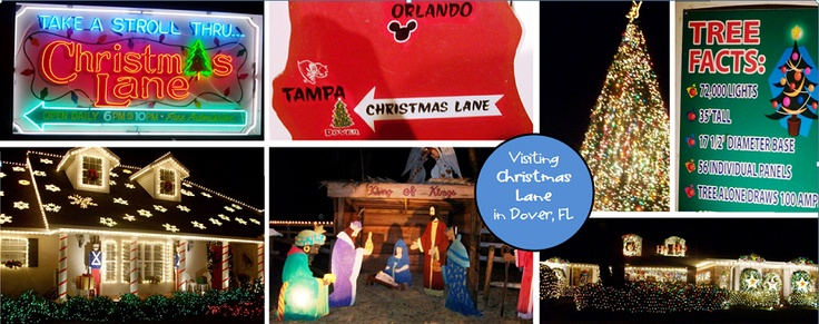 Christmas Lane in Dover, FL: Christmas Lane