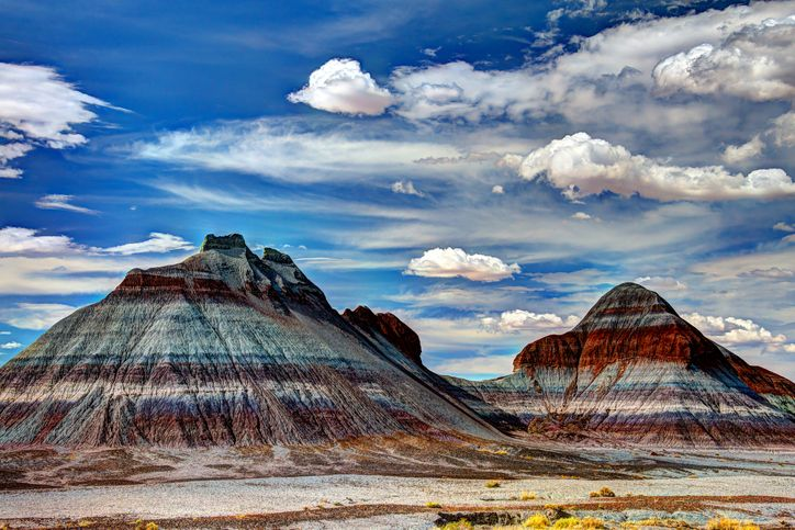 Petrified Forest National Park is a window to the past. We recently toured Petrified Forest National Park, one of the world's largest and most vibrantly co