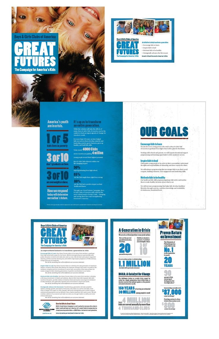 fundraising brochure examples