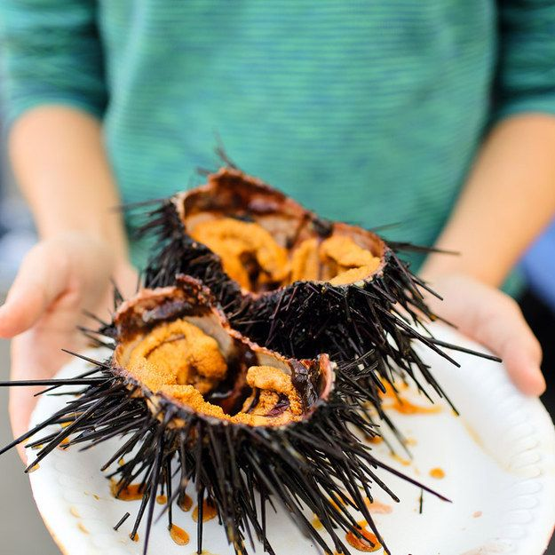 17. Have fresh sea urchin at a farmer's market. | 18 Things You Didn't Know You Could Do In San Diego