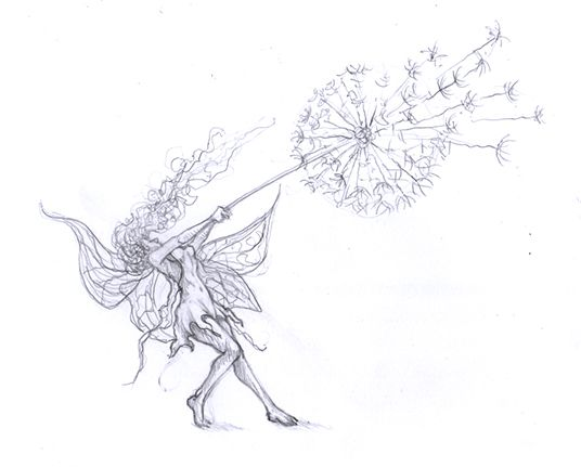 Fairy and Dandelion                                                                                                                                                                                 More