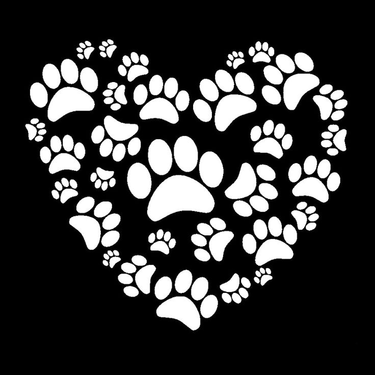 Find More Stickers Information about Dog Paw Print on your heart Car Truck Laptop White Vinyl Decal Window Sticker,High Quality printing sublimation,China print clear stickers Suppliers, Cheap sticker printing service from lhcy Store on Aliexpress.com