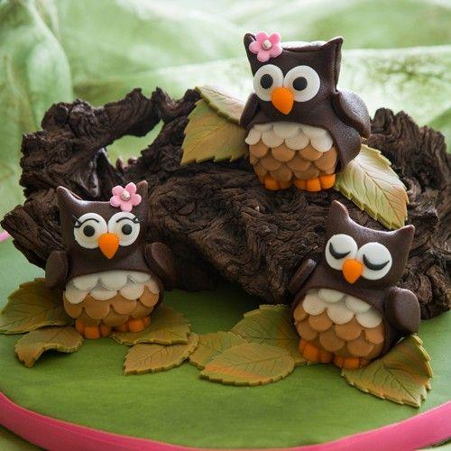 Maak deze schattige uiltjes met behulp van ons recept gemakkelijk zelf. Eerst bak je de uiltjes in de mini bear bakvorm van Wilton met de FunCakes mix voor Cupcakes. Deze uiltjes zijn ideaal voor de herfst, maar ook leuk om uit te delen.