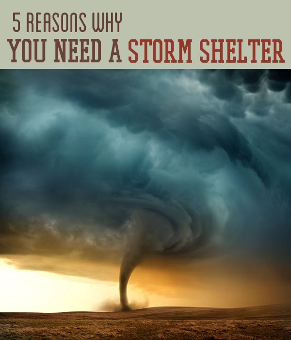 Top 7 Reasons Why The Best Home Bar Design Is A: 64 Best Images About Storm Shelters On Pinterest