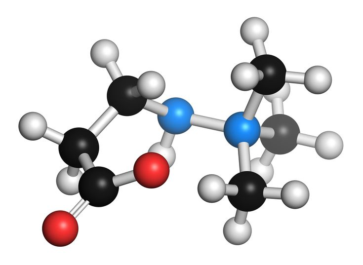 The chemical structure of meldonium. Hydrogen atoms are white, carbon are black, oxygen is red and nitrogen blue. It is typically used to treat angina and myocardial infarction
