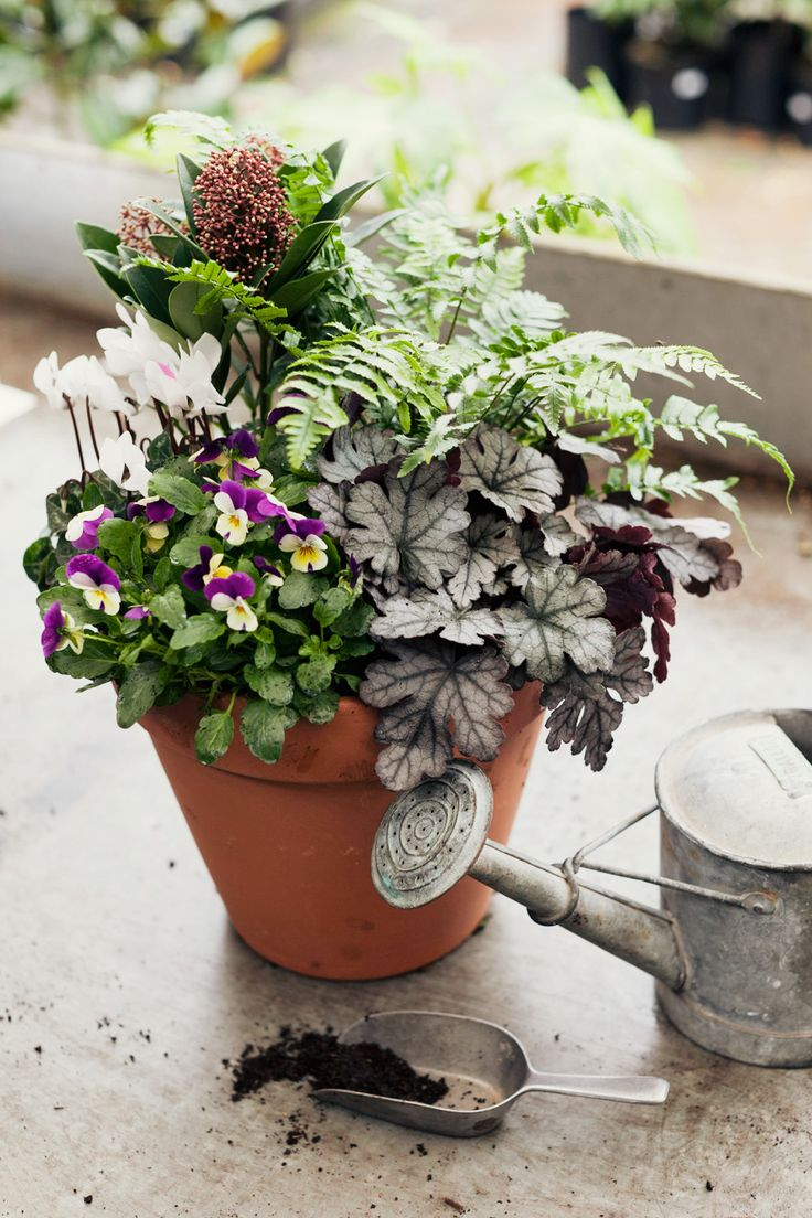how to make a winter hardy container for the garden