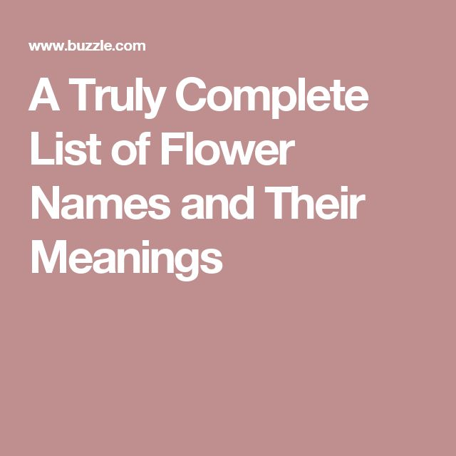 A Truly Complete List of Flower Names and Their Meanings