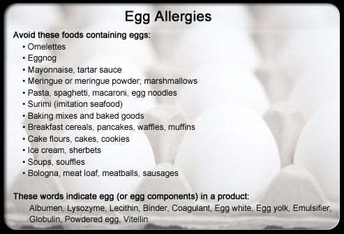 egg+allergy+symptoms | ... Products For Allergy....Common Food Allergy Triggers & Where They Hide
