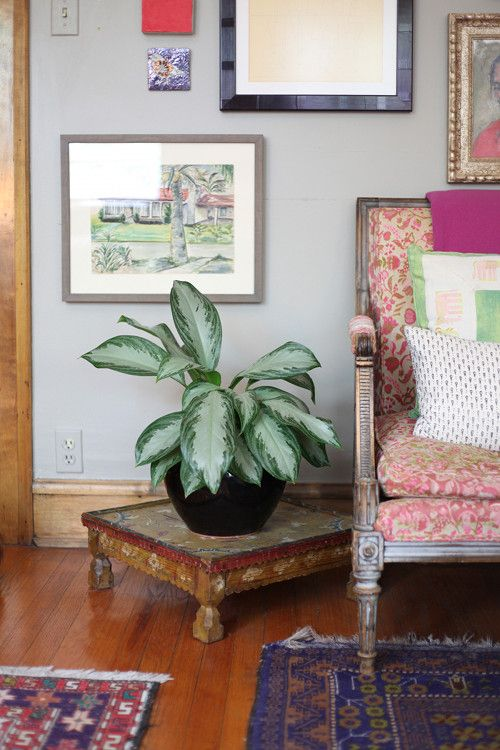 Put a small stylish table under a pretty living room plant, adds tons of flair. Very cool look