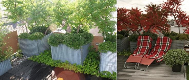 roof garden in Budapest www.gardenworks.hu