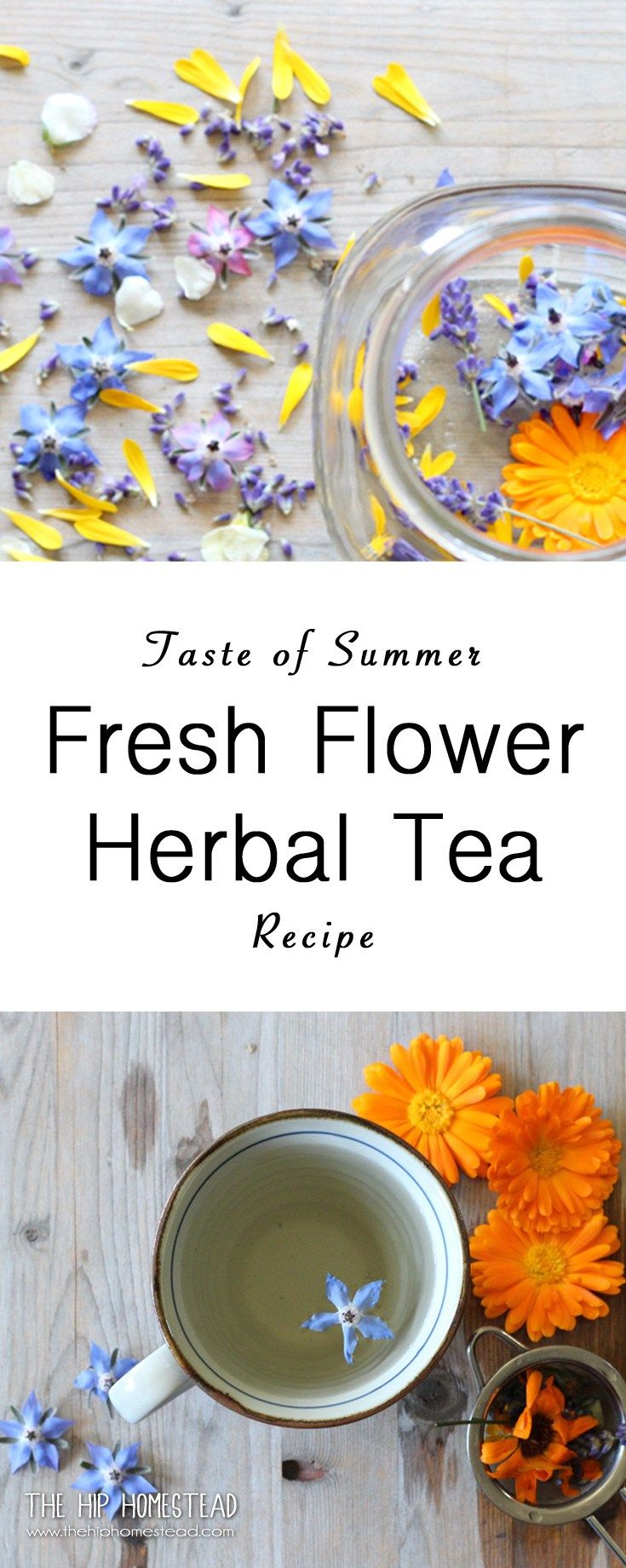 Taste of Summer Fresh Flower Herbal Tea The Hip Homestead