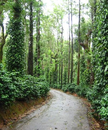 #coorg