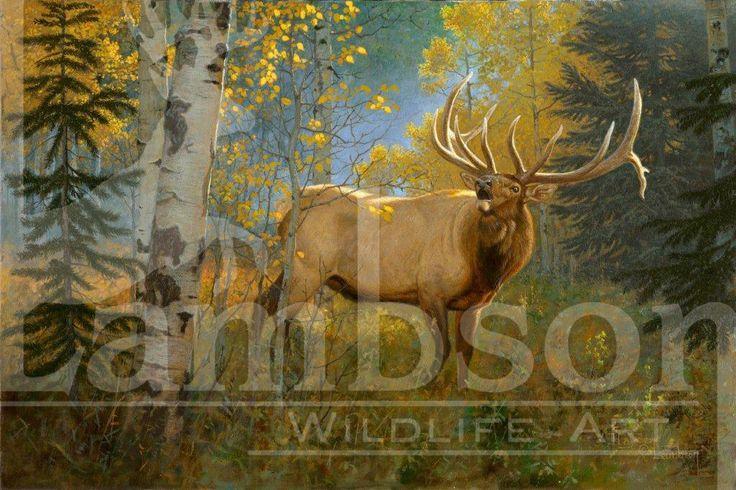 67 Best Lambson Wildlife Art Images On Pinterest