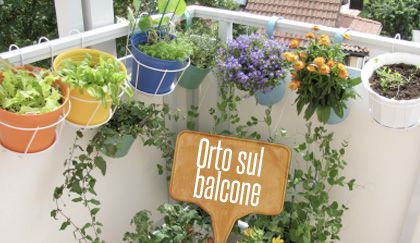Orto sul balcone: 8 consigli su cosa coltivare e come farlo in poco spazio   Giardinieri in affitto