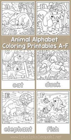 Animal Alphabet Coloring Printables </strong> for you! Letters M through R are free to download here and other free sets will be coming. If you don't want to wait, you can grab the <em class=short_underline> full set here in my Teacher's Notebook Shop </em>. Each letter features an animal and a fun coloring picture to go along. M is for mouse, N is for narwhal, O is for owl, P is for penguin, Q is for quail an...