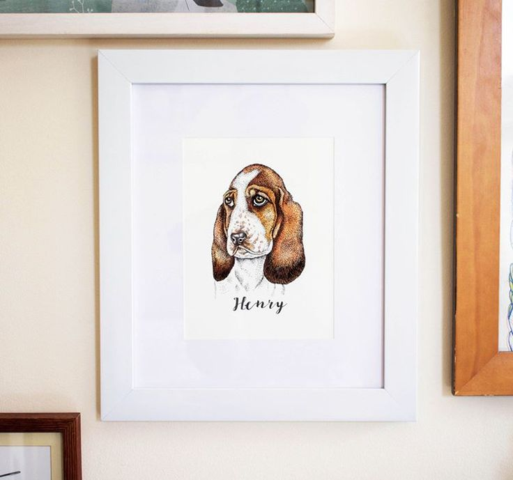 **NEW** Bespoke A5 watercolour & pen illustrated pet portraits are now available to order via the www.katiecraven.co.uk website shop & Etsy 🎉🎉 Portraits are £65 including a hand illustrated calligraphic name of your pet underneath 🎉💞 These A5 portraits make such a wonderful gift for family & friends 🎈🎈🎁🎁💞💞 . . . #petportrait #catstagram #dogstagram #petstagram #petportraitdrawing #jackrussell #dogs #cats #petlover #dogowner #petsofinstagram #drawing #illustration #penandink…