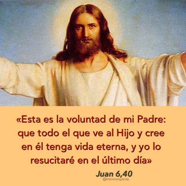 Juan 6 40 Que Todo El Que Ve Al Hijo Y Cree En él Tenga Vida Eterna Biblia Católica Palabra De Vida Sagrada Escritura