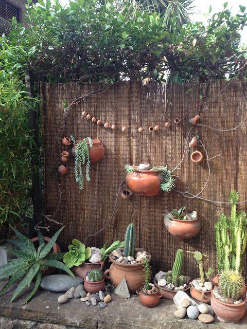 Jardín Rústico con Cactus y Suculentas
