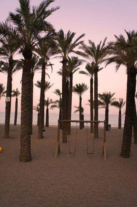 Torremolinos palm trees on the beach