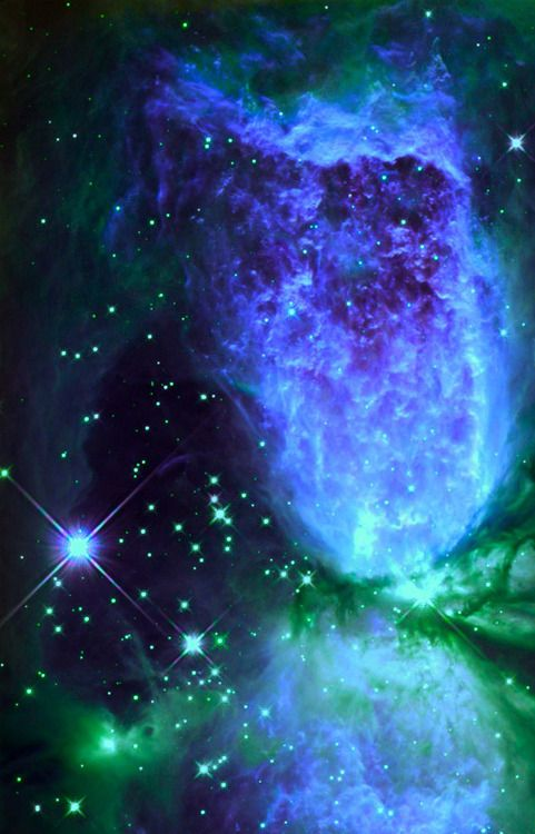 IRS 4 ~A young star undergoing a violent yet majestic birth.