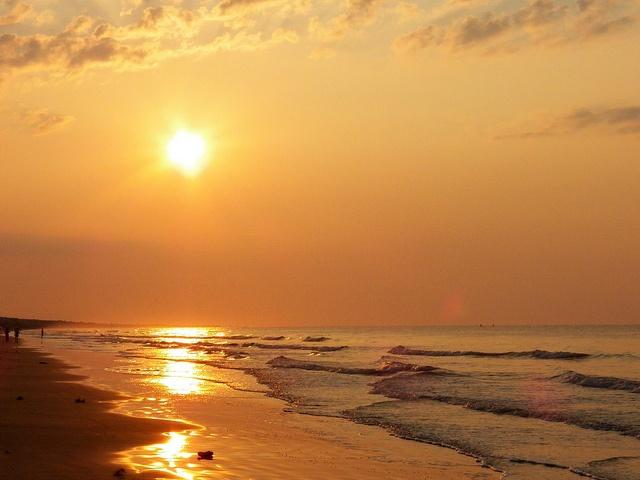 203 Best Kiawah Island Images On Pinterest Kiawah Island South Carolina Vacation Places And