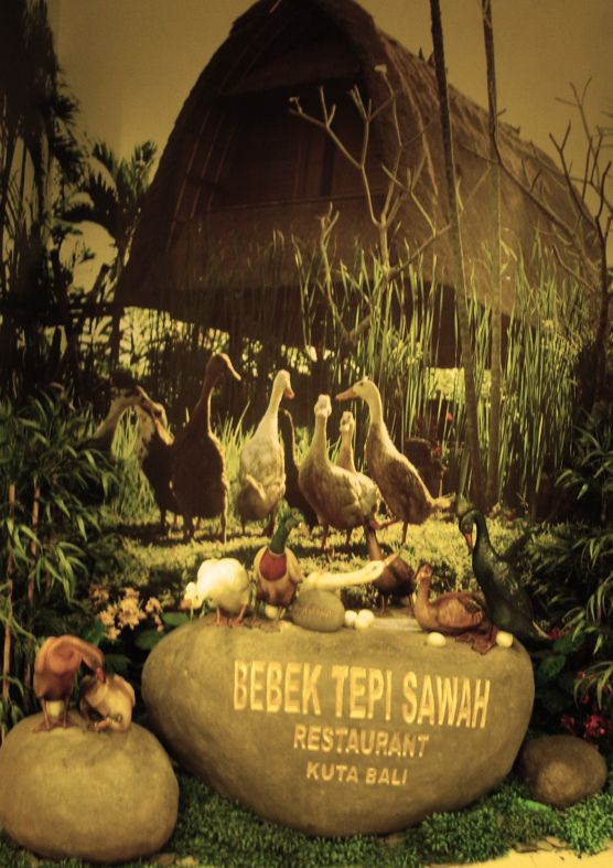 https://flic.kr/p/f1o6kY | Bebek Tepi Sawah