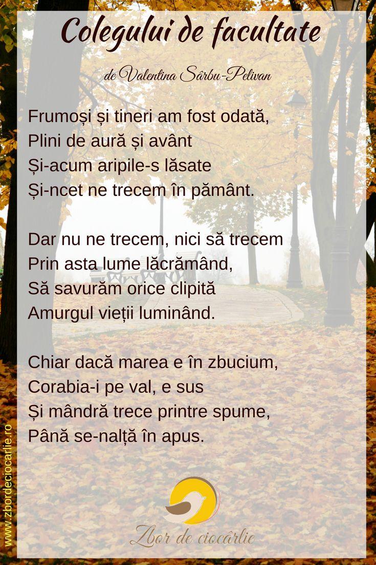 Poezii triste, poezii batranete, poezii amintiri, poezii romanesti, poezii de Valentina Sarbu-Pelivan