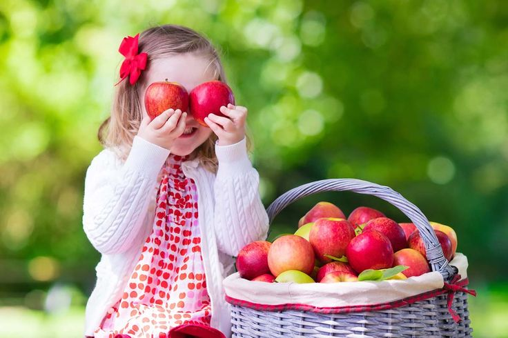 Die Liebe geht durch den Nutzgarten