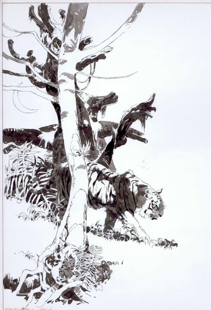 Jeff Jones Vampirella #34 Ink splash Comic Art