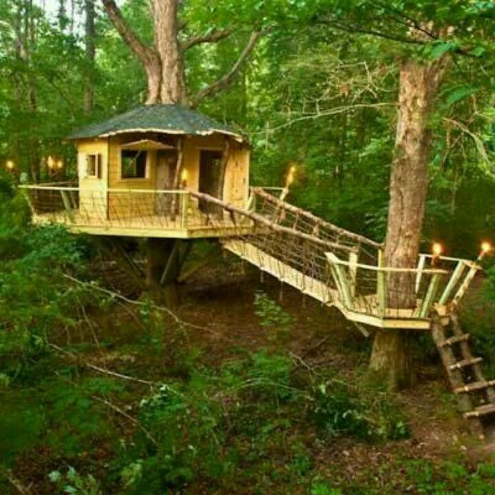 14 best awesome tree houses images on pinterest | awesome tree