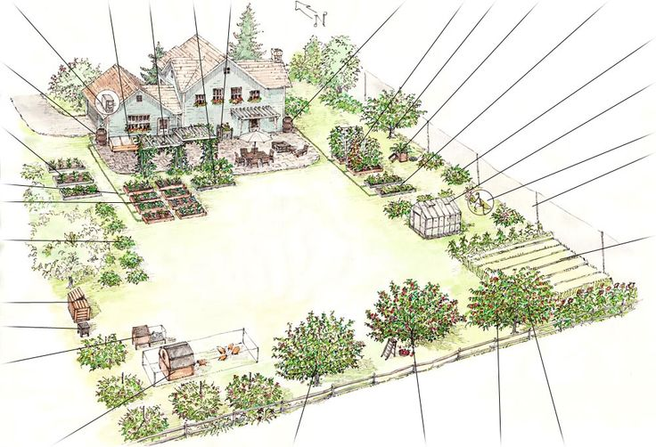 Family backyard landscaping plan resource to ensure that 1 acre farm layout