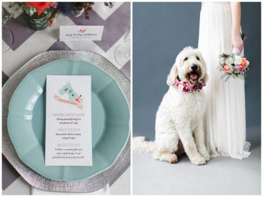 Pet Friendly Wedding Inspiration   Lemon & Lime Events   Meghan Boyer Photography