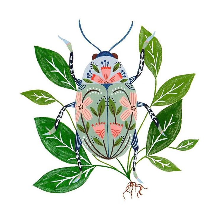"Floral folk-art beetle illustration/painting/print....Flora Waycott (@florawaycott) on Instagram: ""A beetle in lush surroundings """