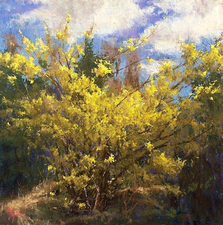 Forsythia Afire by Jacob Aguiar Pastel ~ 24 x 24