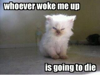 this is me when i get woken up