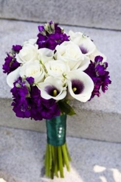 Picasso Calla Lily with purple flowers...prefer hydrangeas