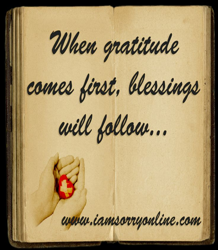 Gratitude is the stepping stone to progress. Our post on why it is so important to be grateful for what you already have. www.Iamsorryonline.com